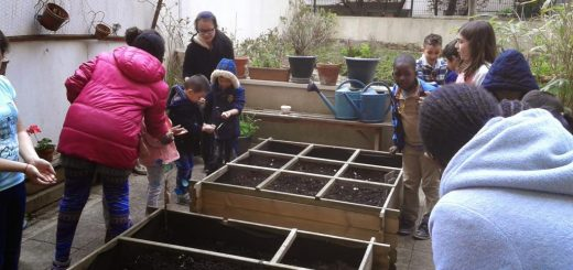 petits-jardiniers_155210